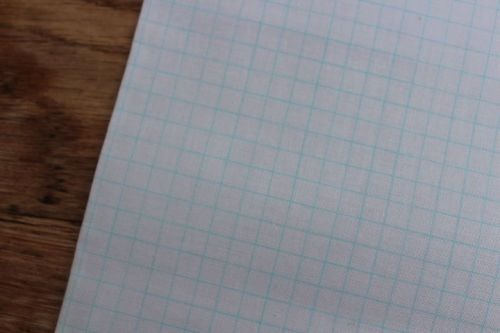 Heather Givans Jot graph paper in batchelor blue