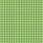 Heather Ross Trixie gingham in Kelly Green