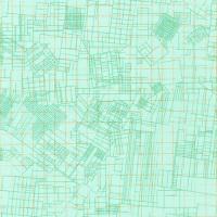 Carolyn Friedlander -CF Collection euclidean in Mint