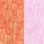 Carolyn Friedlander -JETTY- Wall tile singer border in nectarine