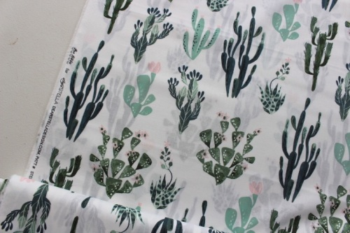 Dear Stella / Rae Ritchie Desert Bloom cacti in white