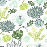 Dear Stella / Rae Ritchie Desert Bloom succulents in green