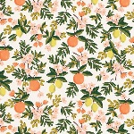 Rifle Paper Co. Menagerie-PRIMAVERA -citrus floral cream