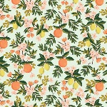 Rifle Paper Co. Menagerie-PRIMAVERA -citrus floral mint