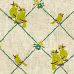 Kokka chirpy birds on a wire in yellow