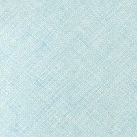 Carolyn Friedlander botanics crosshatch  weave in blue