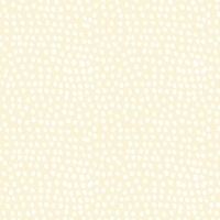 Dashwood Studios Flurry in cream