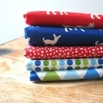 Mini Cloth Stack bluey boy critter collection