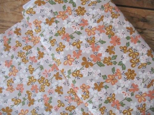 Brie Harrison Suffolk Garden sweet William