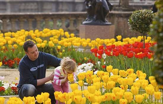 Click here to see the Top 10 Historic Gardens with English Heritage