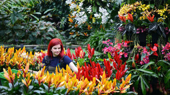 Give a Joint Adult Friends of Kew Gift Membership