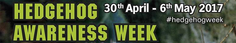 Click here to find out about Hedgehog Awareness Week