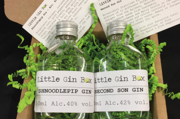 Three Months Gin Subscription with Little Gin Box