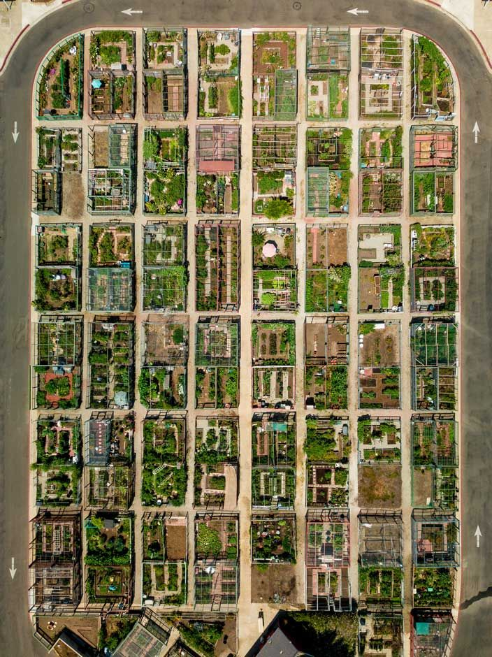 An aerial photo of a community garden by Richard Caldwell