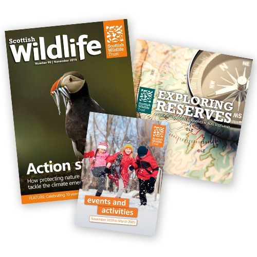 Give a Gift Membership to the Scottish Wildlife Trust
