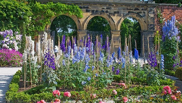 Enjoy the gardens at different times of the year with a gift membership