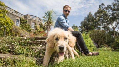 Walkies!   Head to the National Trust to find out more