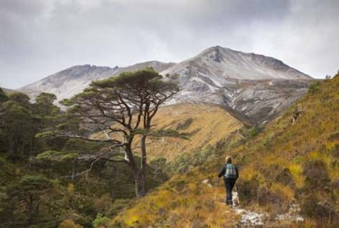 Give a membership to the John Muir Trust today