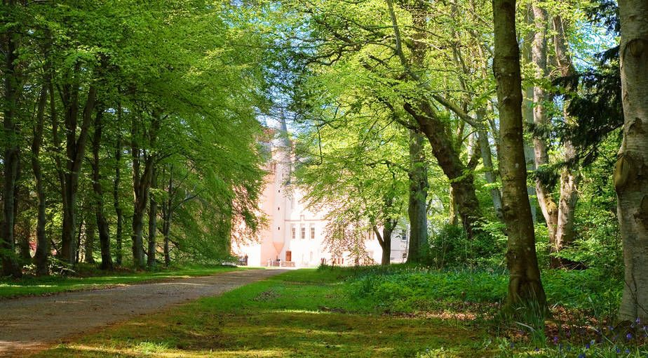 Take a virtual tour of the Brodie Castle's Shrubbery