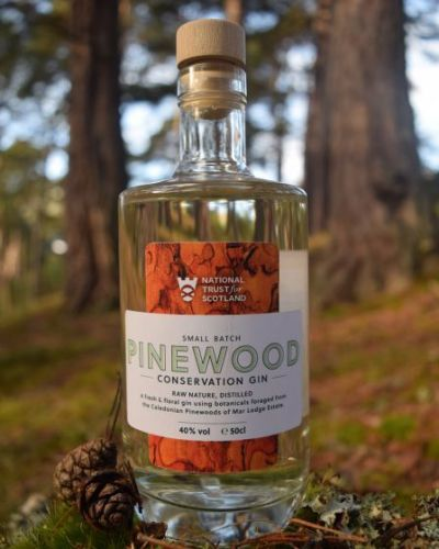 Pinewood Conservation Gin