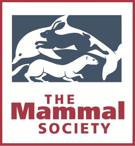 Give the Mammal Society your support and help mammals