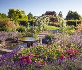 There's so much to enjoy with an RHS Membership!