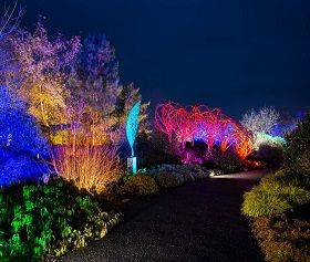 Get ready to GLOW at the RHS Gardens!