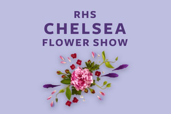 Find out what's on at the RHS Chelsea Flower Show in September 2021