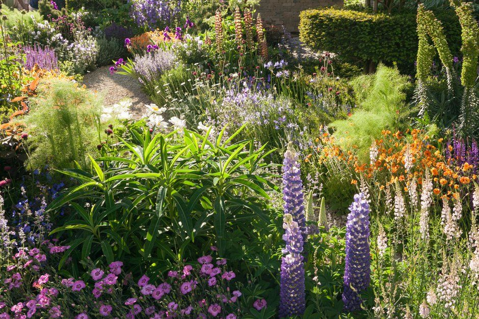 Visit the RHS to find out more about RHS Chelsea Flower Show