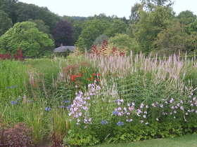 Members can enjoy days out exploring beautiful gardens with an RHS Gift Membership