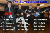surrey blues photo - 2018