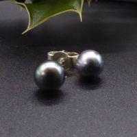 Black Peacock Pearl Studs with silver backs 7-8mm