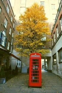 Shepherd Market, Mayfair, London, red telephone box