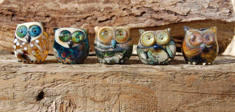5 owls named