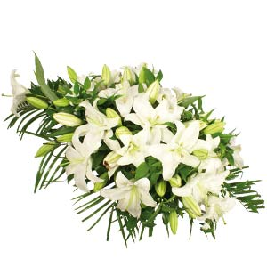 White Lily Oasis Spray