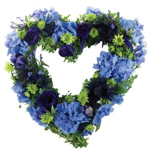 Blue Open Heart