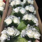 All white bridesmaids bouquets