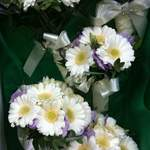 Jo's Wedding Gerbera & Lissianthus Bridesmaids Bouquets.