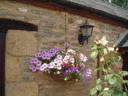Cottage Outside Basket