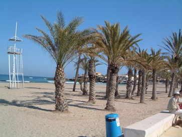 Javea Palms on the Beach