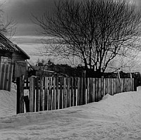 Fences (15mm)
