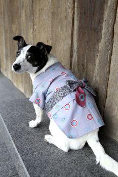 Dog Kimono Susumu