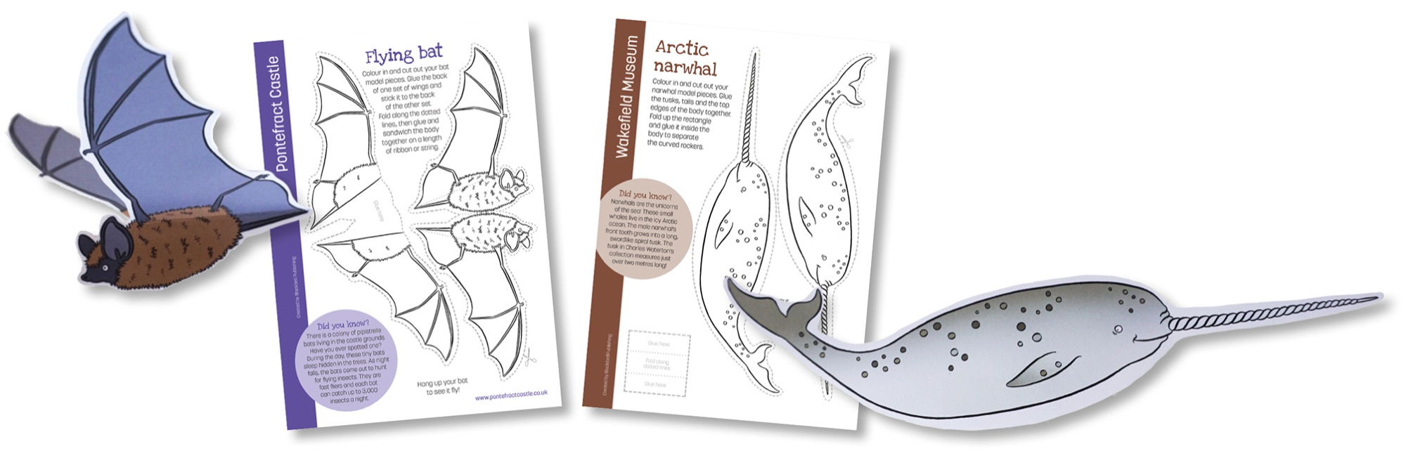 Blackbird Publishing Colouring Papercrafts 3-D Animal Model Activity Sheets