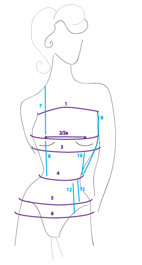 corset measurements in a diagram
