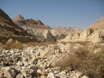 Wadi Mishma -Dead Sea by James P. Smith