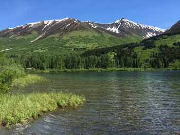 Alaska Scenery by Kim Risen