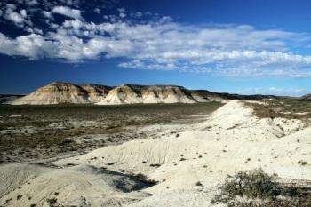 Patagonian steppe Luis Segura