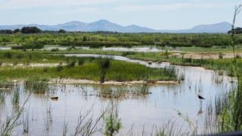 SAbulfera Nature reserve