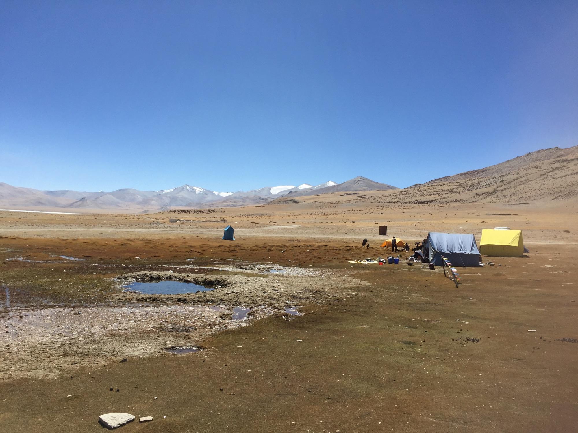 Tso Kar Camp