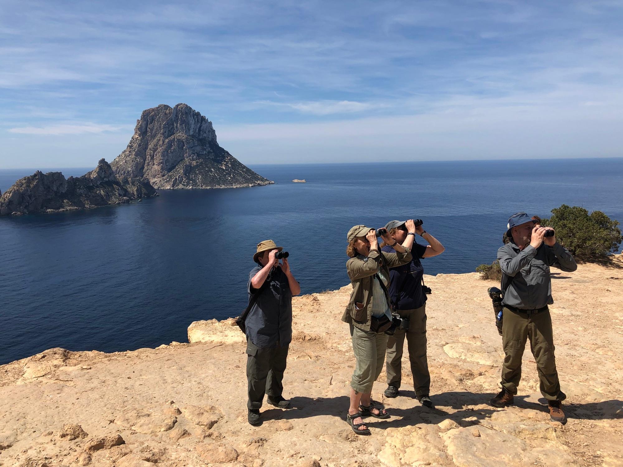 Birding Ibiza